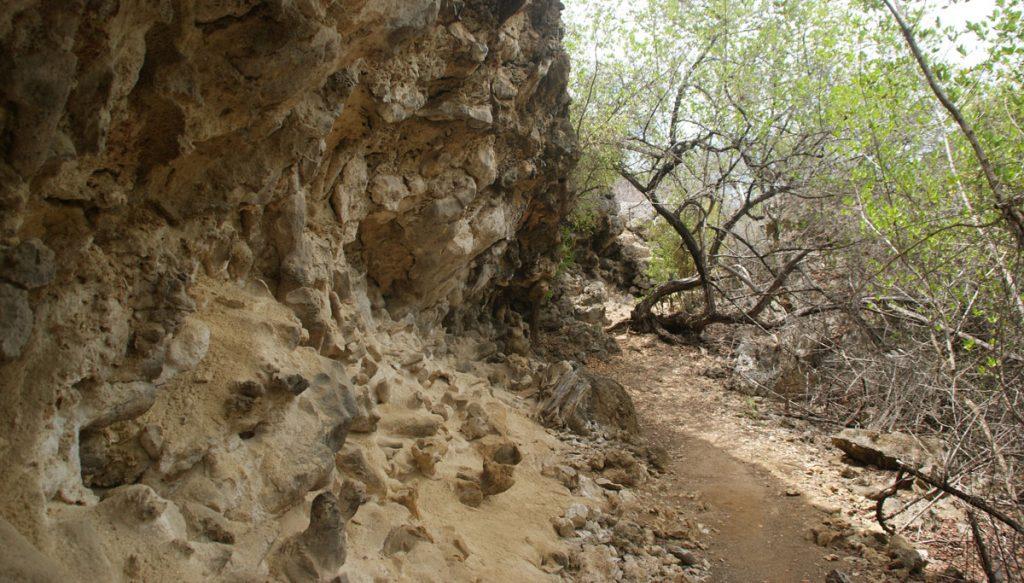 pad naar boka grandi langs de rotsen in curacao