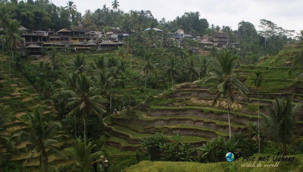 Uitzicht op de warungs in de Tegalalang rijstterrassen