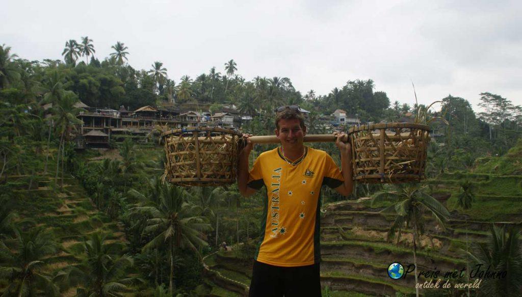 Ik met de rijstmanden in mijn handen in de Tegalalang rijstterrassen
