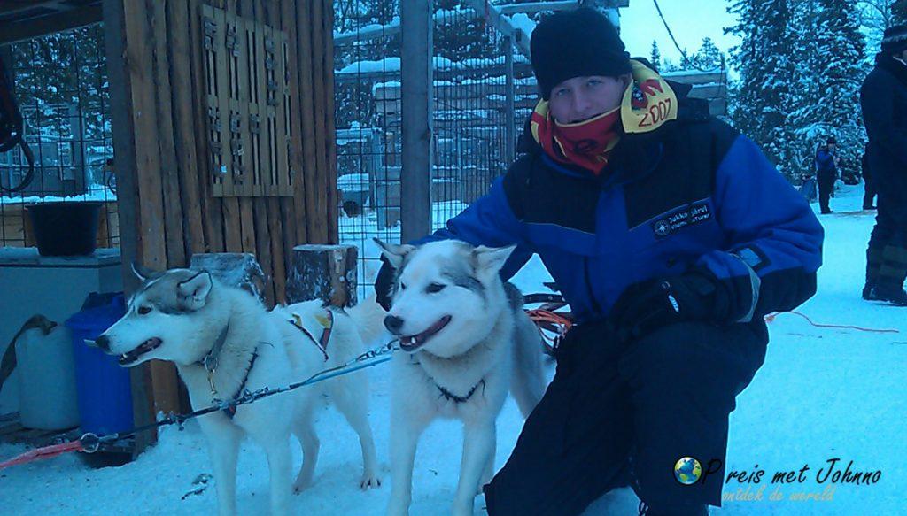De husky's zijn klaar voor de tocht