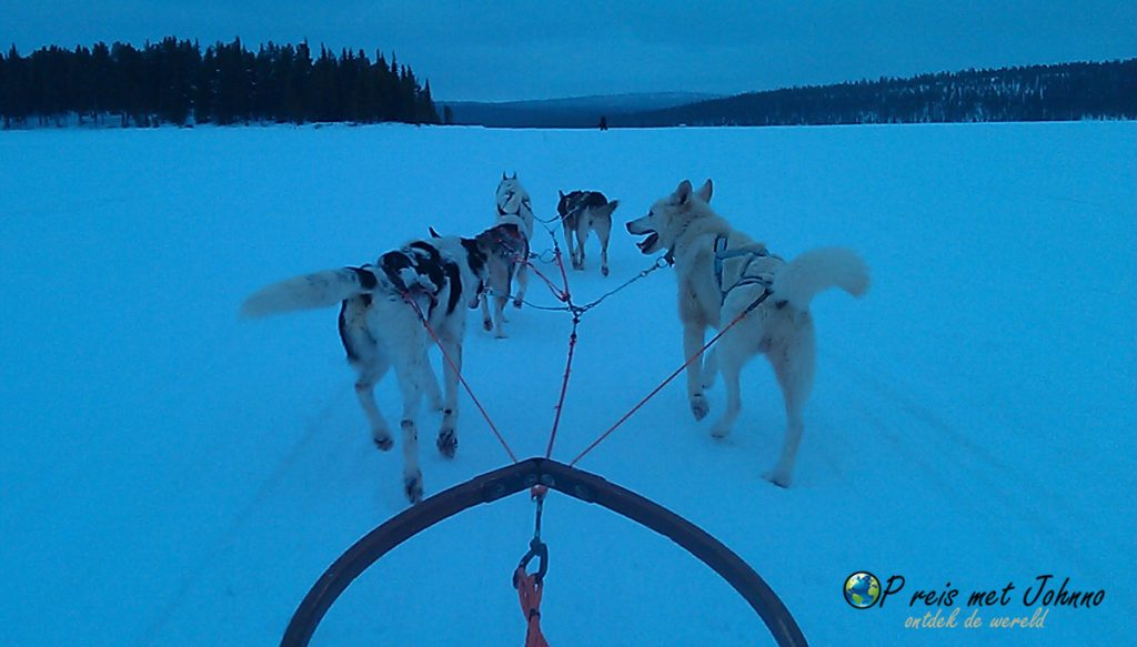 Huskytocht over de bevroren meren in lapland