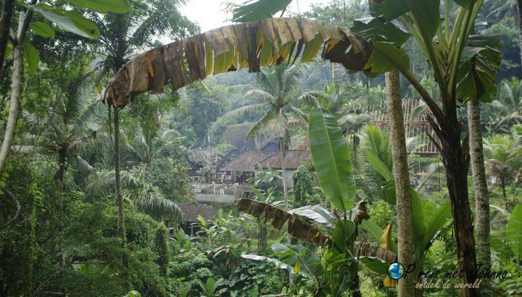 uiticht op de tempels in de Tegalalang rijstterrassen