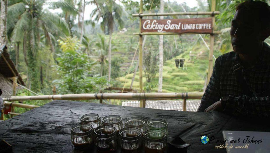 Koffieproeverij of oplichterij in de Tegalalang rijstterrassen