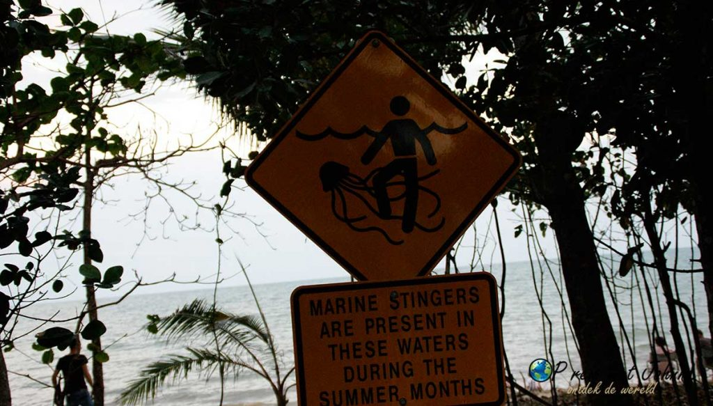 Daintree oceaan, bekend om de giftige kwallen