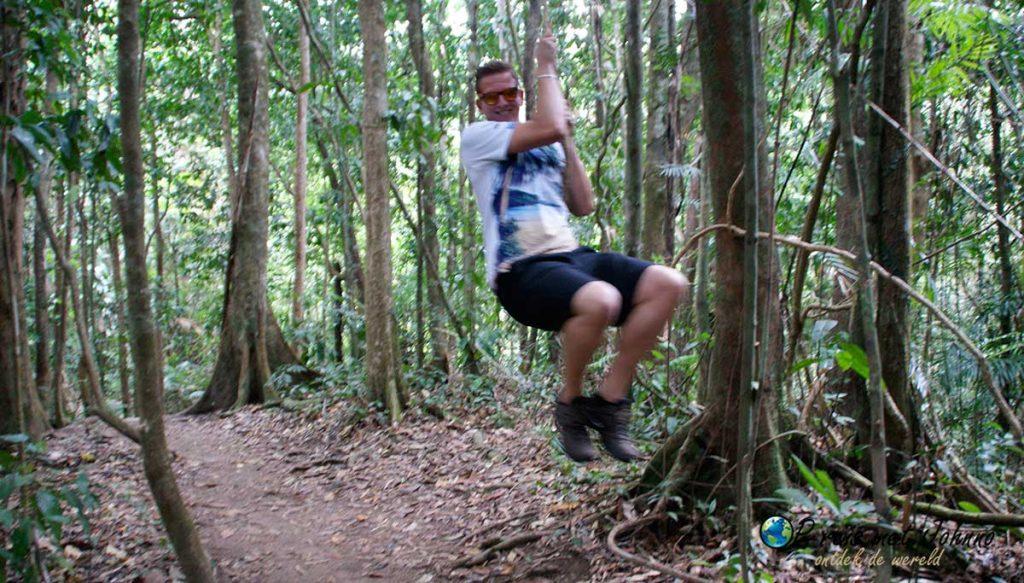 Zie mij gaan als tarzan in het regenwoud