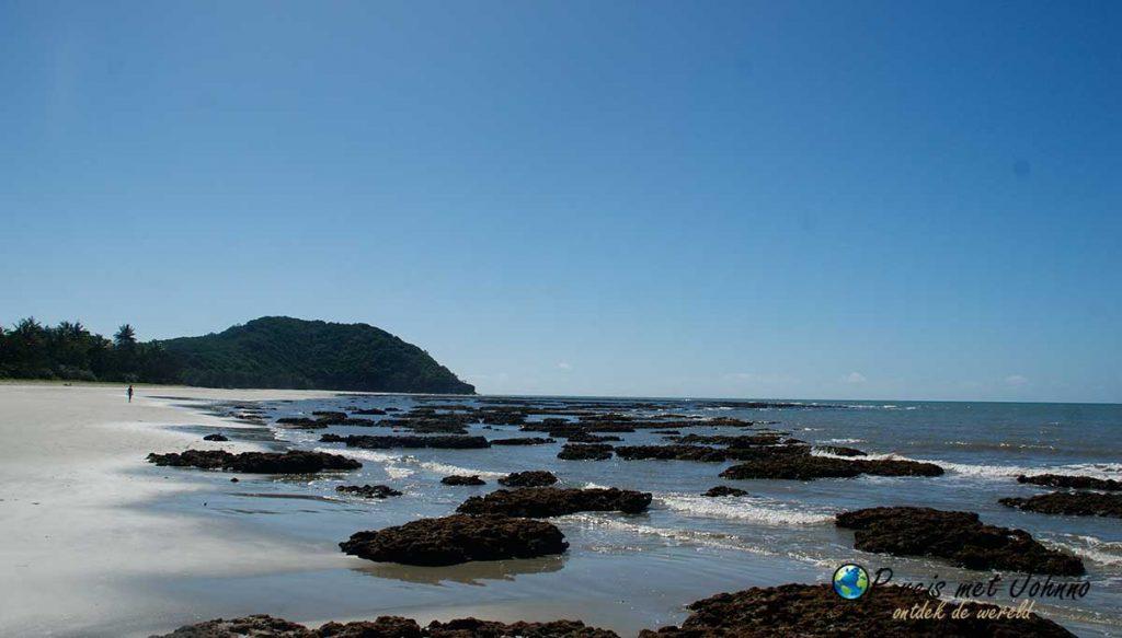Wat een uitzicht op het strand van daintree rainforrest