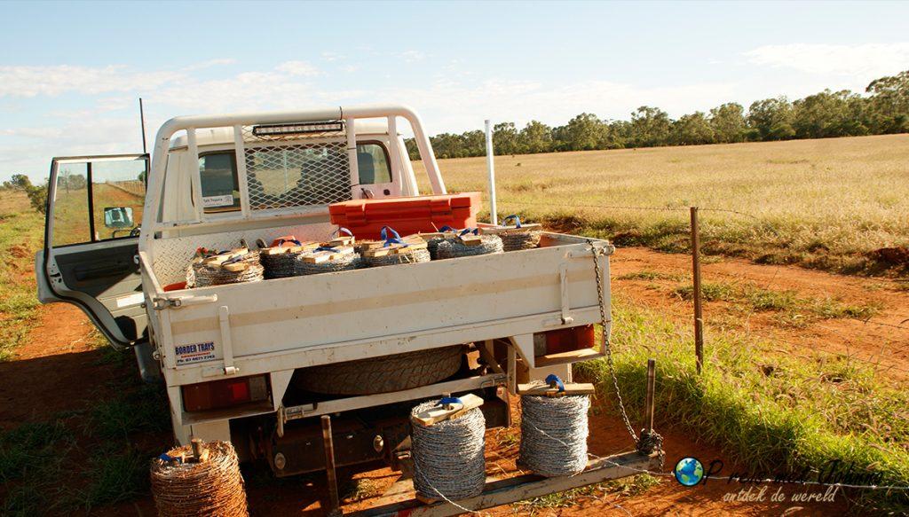 PRikkeldraad uitleggen, voor het nieuwe hek. Een van de werkzaamheden tijdens mijn farmwork in Australie.