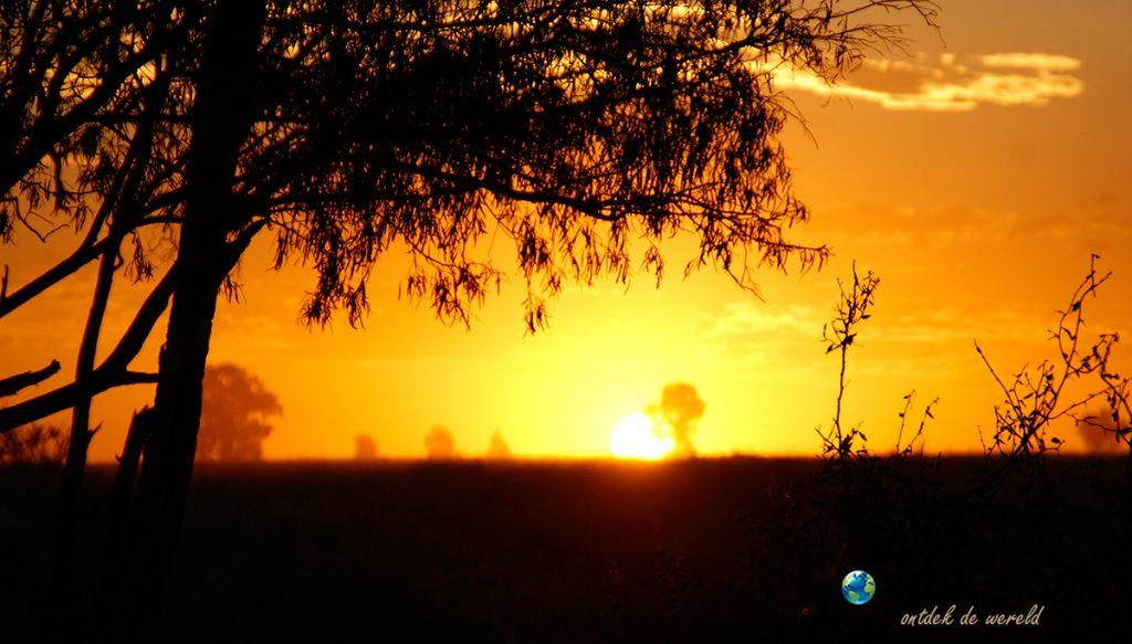 Zonsondergang in de outback australië. een dagelijks taffereel tijden mijn farmwork.