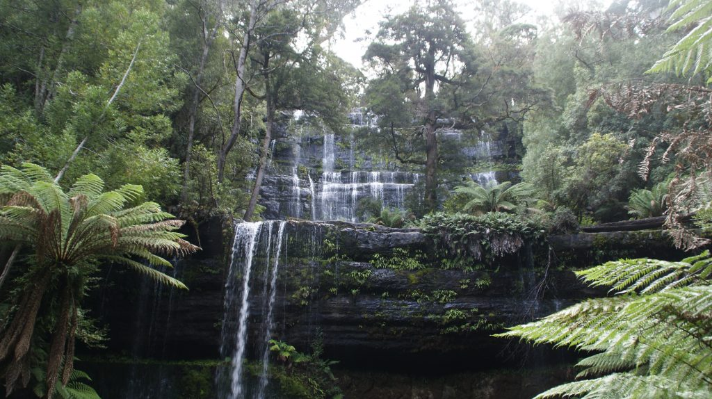 Een van de watervallen van Mount Field